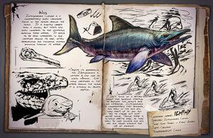 34 - Ichthyosaurus