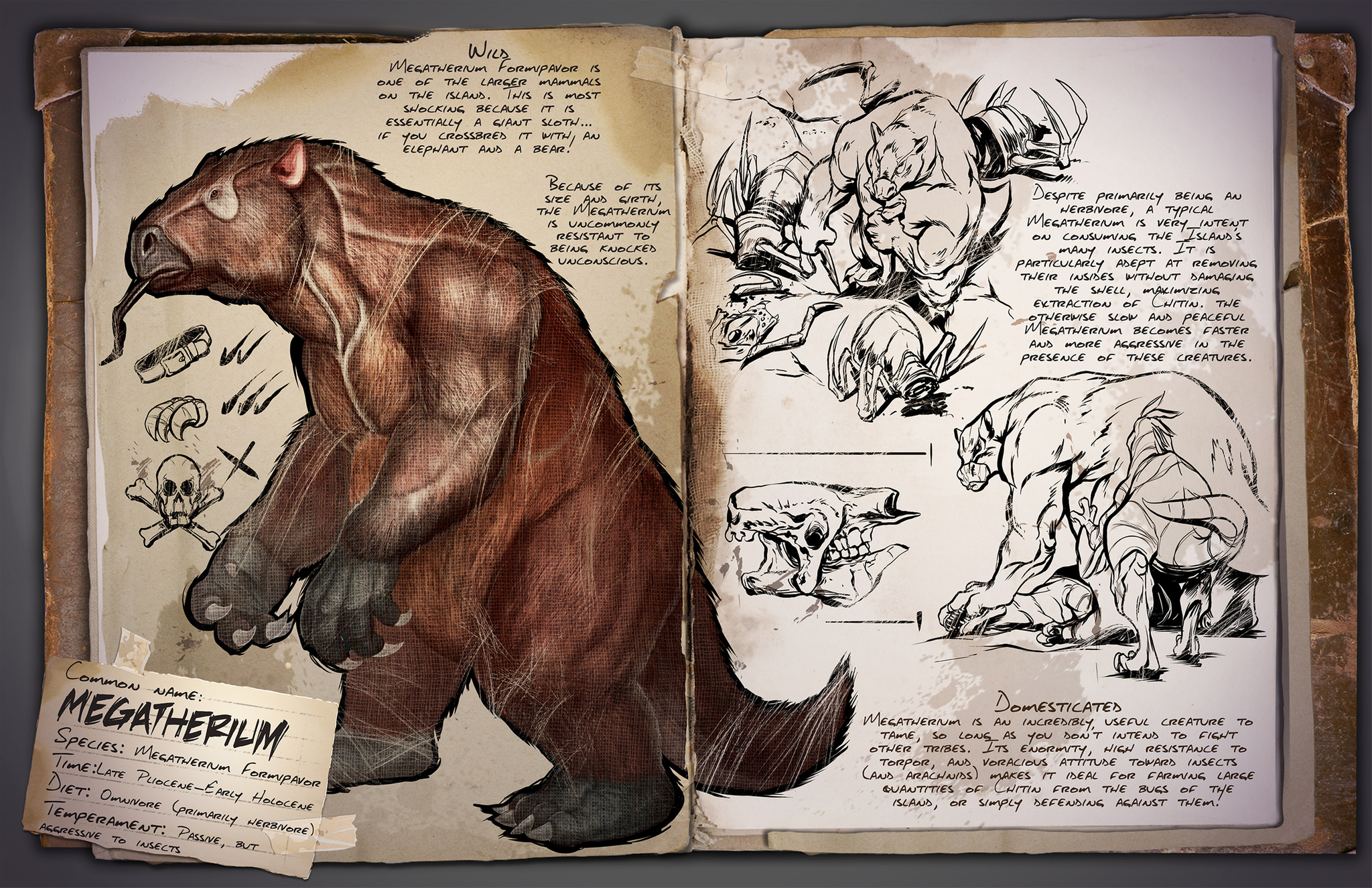 Beautiful Megatherium