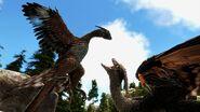 Large.Microraptor03