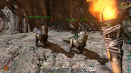 ARK-Pachycephalosaurus Screenshot 008