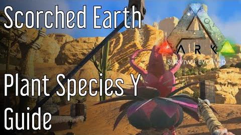 Plant Species Y Guide Ark Scorched Earth