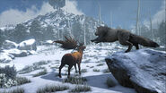 ARK-Direwolf and Megaloceros Screenshot 001