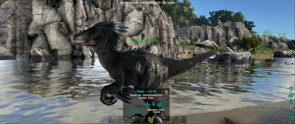 ARK-Raptor Screenshot 007