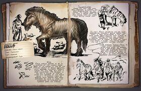 800px-Equus Dossier