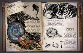 Ammonite Dossier