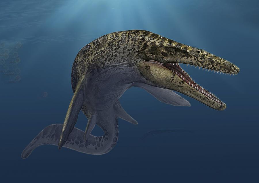 Картинки по запросу Мозазавр