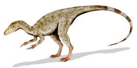 Compsognathus BW