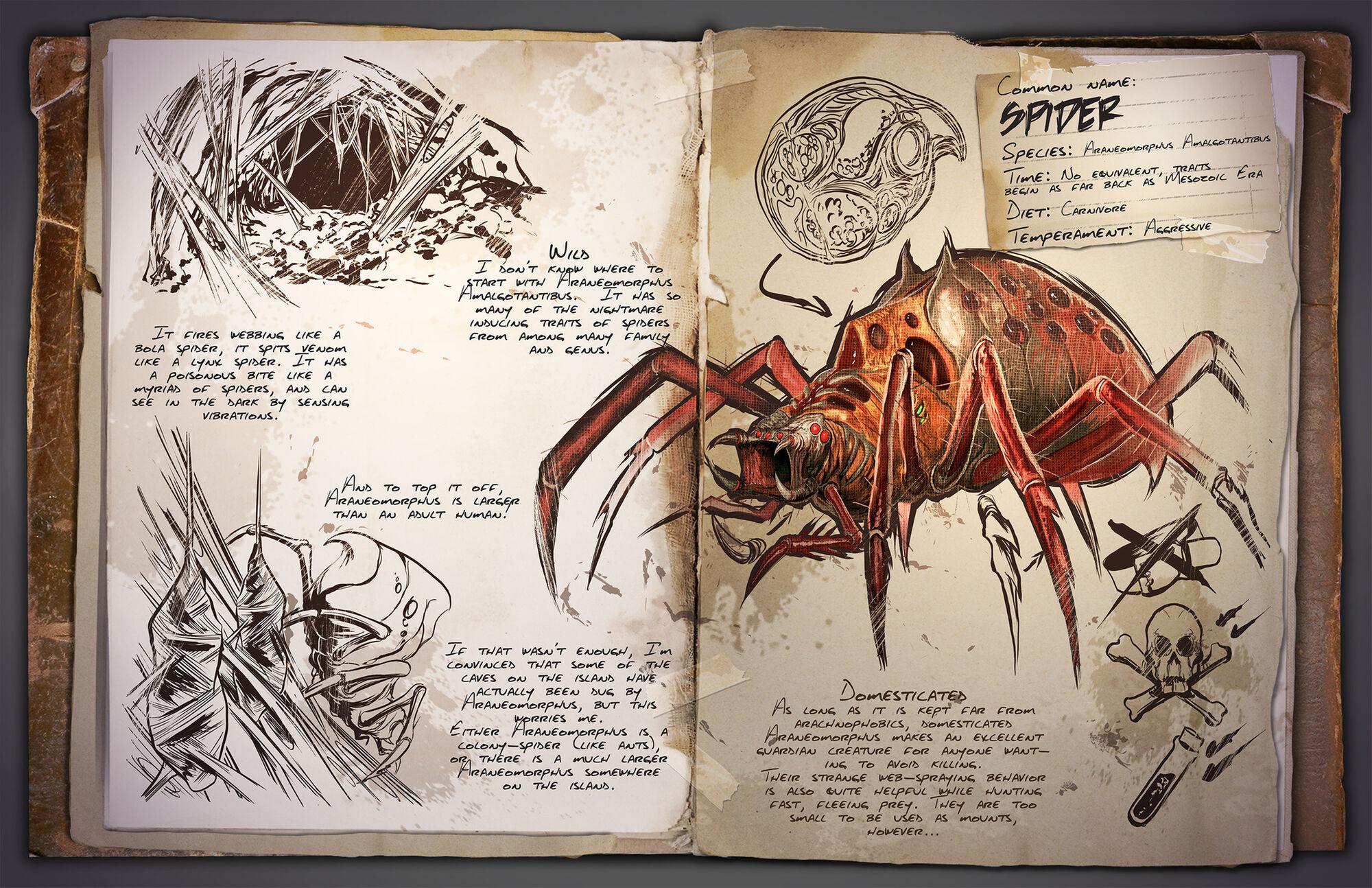 Araneomorphus | ARK: Survival Evolved Wiki | FANDOM powered