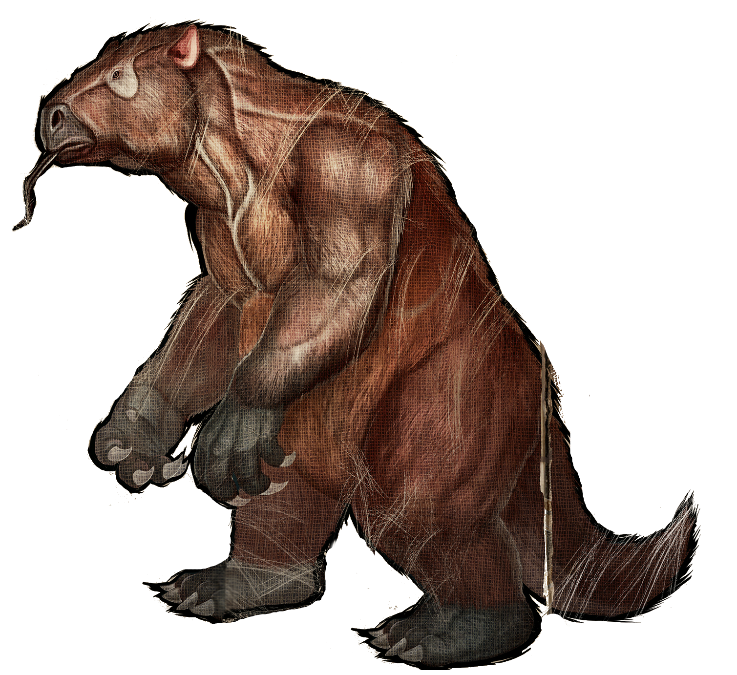 image megatherium wikia ark survival evolved fandom powered by wikia. Black Bedroom Furniture Sets. Home Design Ideas