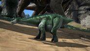 Diplodocus06
