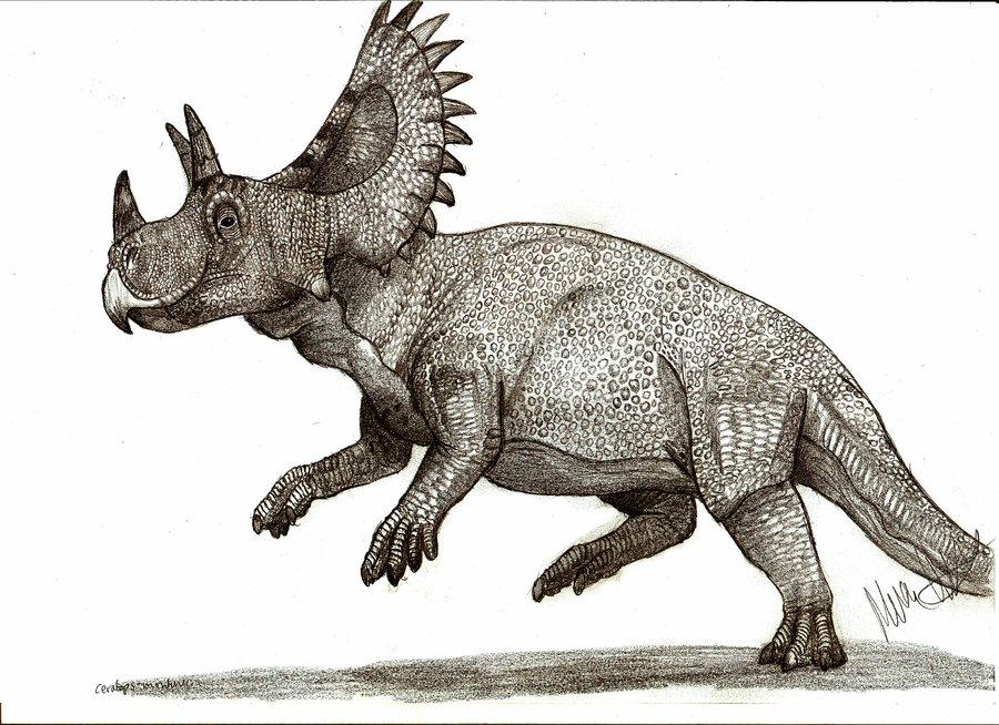 всем динозавр с рогами картинки пряди плохо поддаются