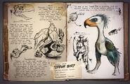 Images terror bird