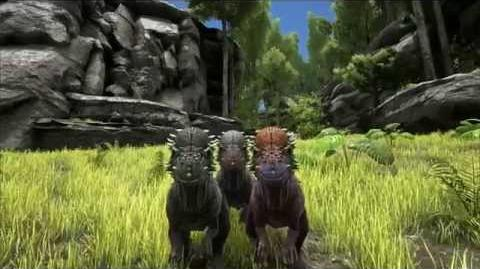 Spotlight Pachycephalosaurus!