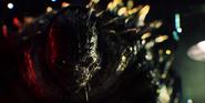 Croc Trailer