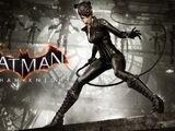Catwoman's Revenge