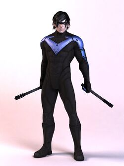 ACModelNightwing2