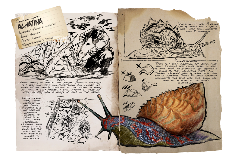 Achatina arksurvival evolved wiki fandom powered by wikia achatina dossier malvernweather Choice Image