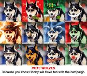 Campaign15