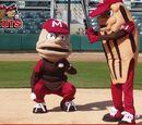 Article:2008 BABPAPs: Baseball Awards Based on Probably Awful Predictions