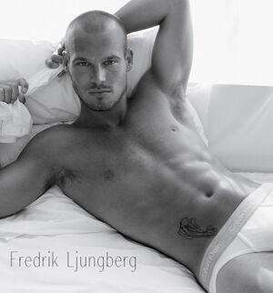 Fredrik-Ljungberg2