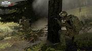 Arma2-Screenshot-13