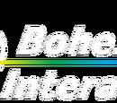 Bohemia Interactive Studio