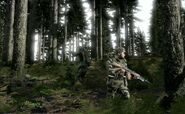 Arma2-Screenshot-14