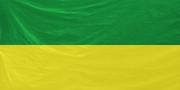 Arma2-flag-chernarussiandefenceforces