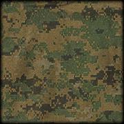 Arma2-camouflage-usmc