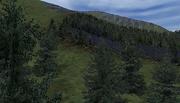 OFP-terrain-everon-03