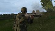 Arma2-bizon-05