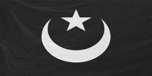 Arma2-flag-takistanimilitia