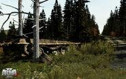 Arma2-terrain-chernarus-16