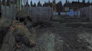 Arma2-bizon-03