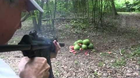 MP5 Suppressed vs Watermelons
