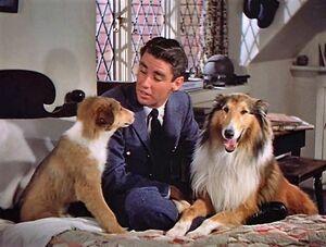 El hijo de Lassie-1945-1a27