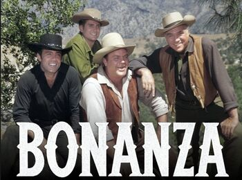 Bonanza-1a5