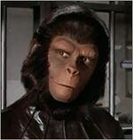 Escape del planeta de los simios-1c
