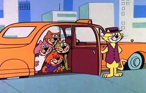 Don gato-03-1s