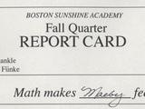 Boston Sunshine Academy
