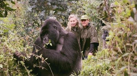 Exclusive Ellen's Summer Trip to Rwanda