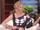 2014 The Ellen Show - Portia de Rossi (10-14-14) 02.png