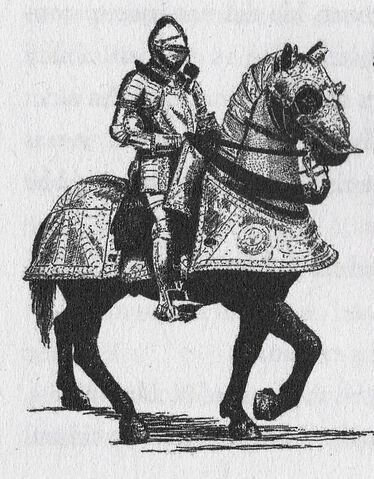 File:Gavinaugh as a Noble Knight.jpg