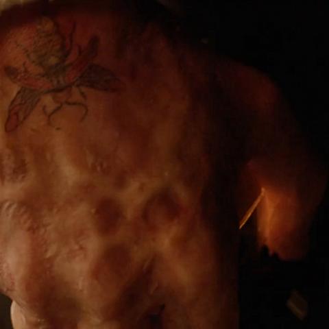 tatouage de luciole (Firefly en V.O.)