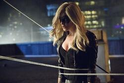 Arrow-saison-2-episode-4-crucible-black-canary