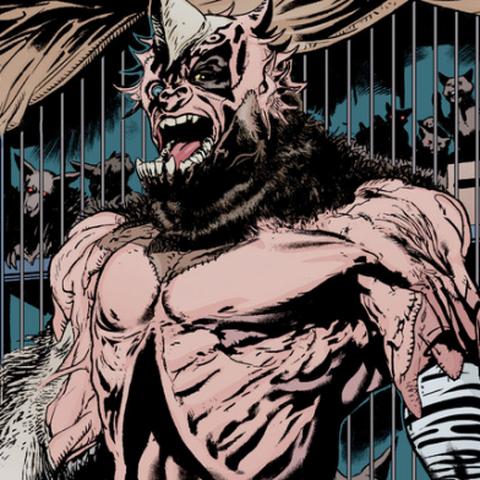 Dans les comics DC