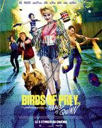 Birds-of-prey-affiche-finale-france