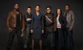 Suicide Squad promotional image.png