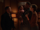 Diggle family