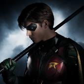 Titans Wiki (banner)